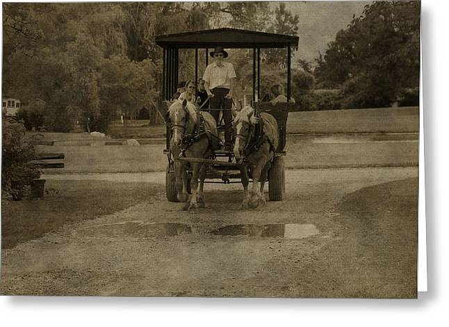 Indiana Photography Greeting Cards - Horse Carriage Tour Greeting Card by Dan Sproul