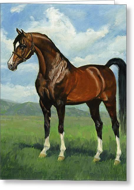Show Horse Greeting Cards - Khemosabi Champion Horse Greeting Card by Don  Langeneckert
