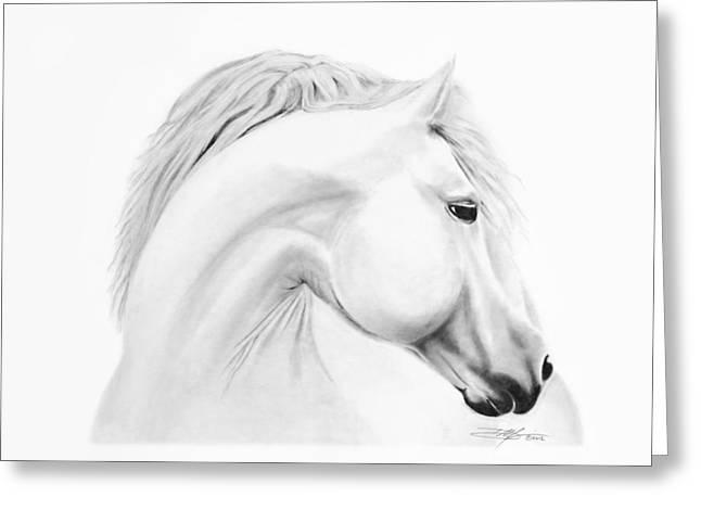 Horse Greeting Card by Don Medina