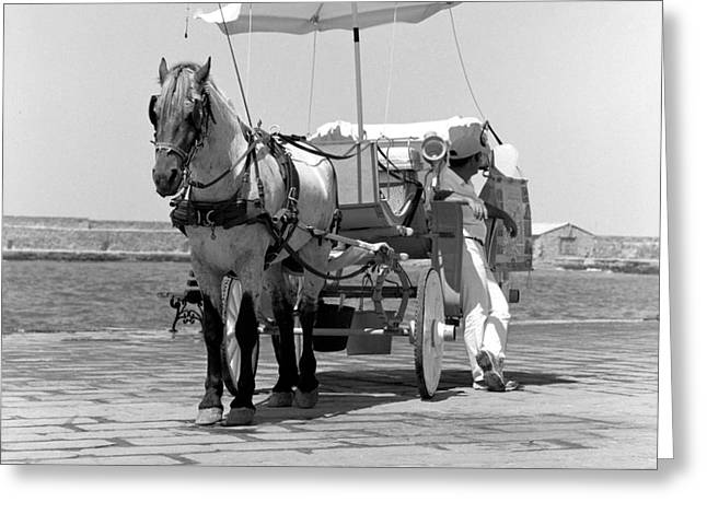 Buggy Whip Greeting Cards - Horse drawn carriage in Crete Greeting Card by Paul Cowan
