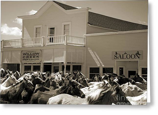Saloons Greeting Cards - Horse Drive Greeting Card by Wildlife Fine Art