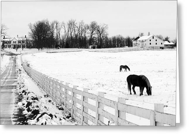 Pasture With Snow Greeting Cards - Horse Farm in Winter Greeting Card by Jim Culler