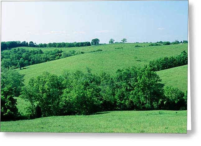 Horse Farm, Kentucky, Usa Greeting Card by Panoramic Images