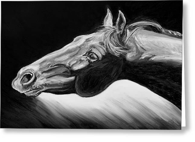 Horse Head Black and White Study Greeting Card by Renee Forth-Fukumoto