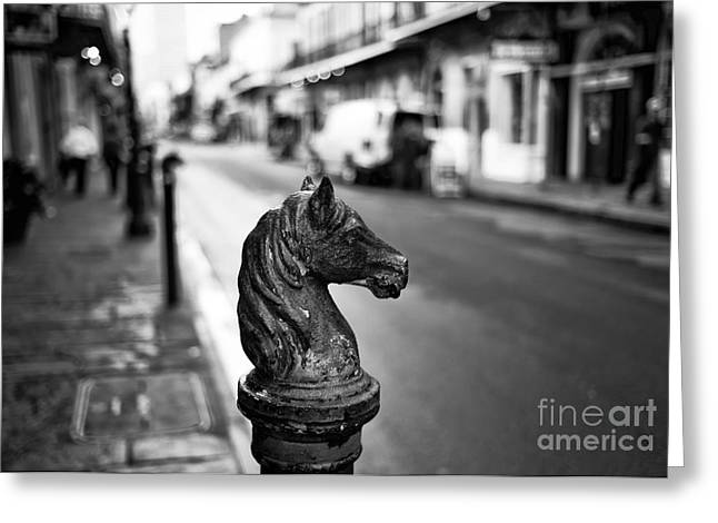 Horse Images Greeting Cards - Horse Head Post mono Greeting Card by John Rizzuto