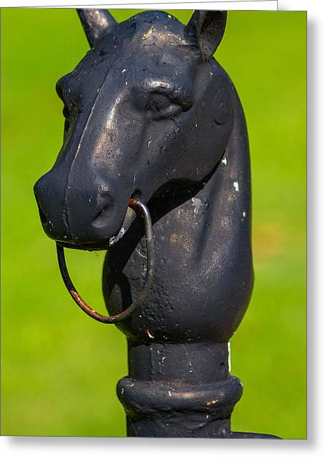 Belle Meade Greeting Cards - Hitching Post Greeting Card by Robert Hebert