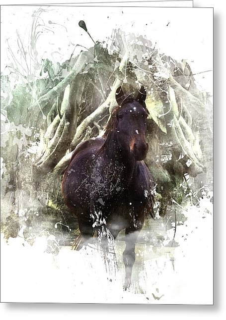 Horse In The Woods Greeting Card by Davandra Cribbie