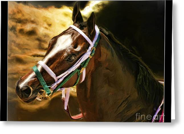 Horse Websites Greeting Cards - Horse Last Memories Greeting Card by Blake Richards