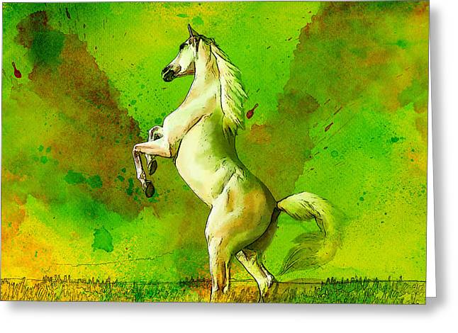 Horse paintings 010 Greeting Card by Catf