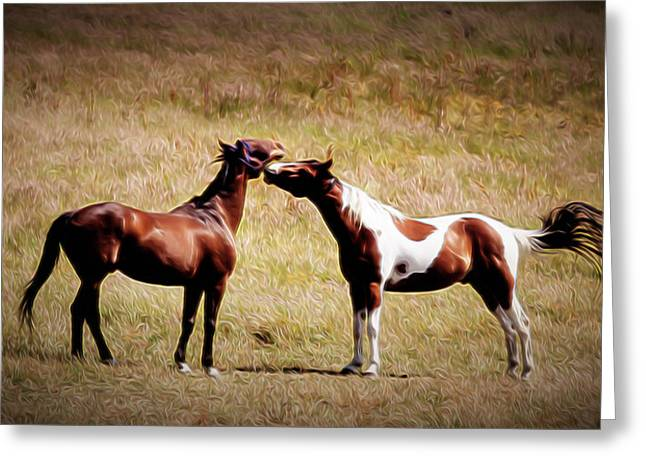 Old Western Photos Greeting Cards - Horse Play Greeting Card by Jacque The Muse