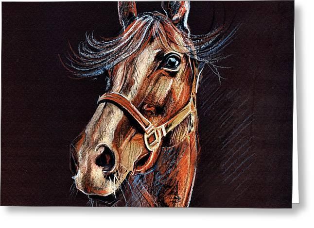 Horse Portrait  Greeting Card by Daliana Pacuraru