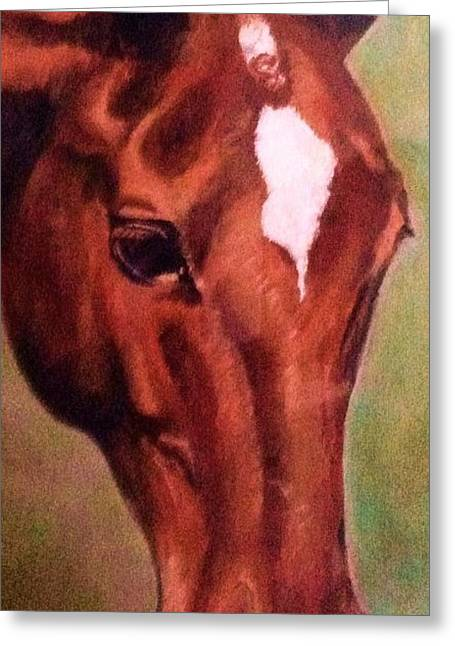 Horse Owner Greeting Cards - Horse Head Red Close Up Greeting Card by Bets Klieger