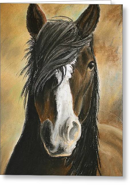 Dust Pastels Greeting Cards - Horse Profile Greeting Card by Rebecca Davis