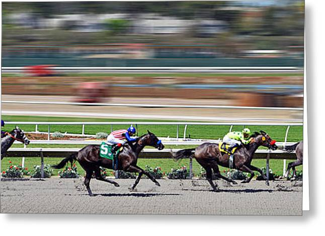 Race Horse Greeting Cards - Horse Racing Greeting Card by Christine Till