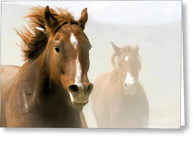 Beautiful Equine Photos Fine Art Greeting Cards - Horse - Red on the Run Greeting Card by Wildlife Fine Art