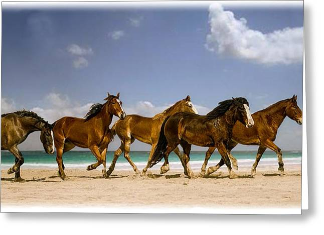 Ed Roth Greeting Cards - Horse Run on the Beach Greeting Card by Ed Roth