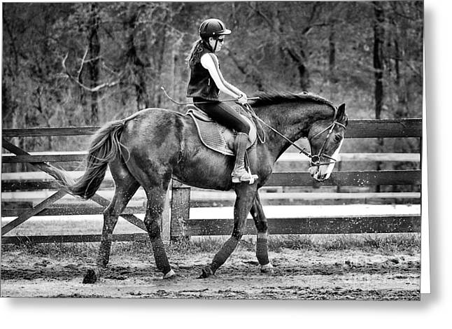 Canadian Grand Prix Greeting Cards - Horse Stroll Greeting Card by Jt PhotoDesign