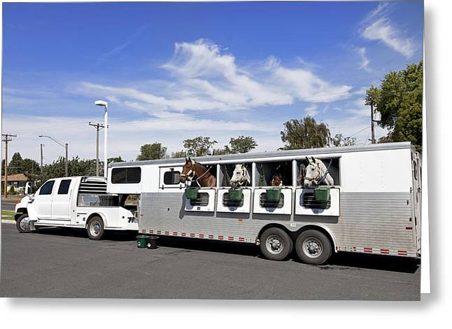 Horse Images Greeting Cards - Horse Trailer Greeting Card by King Wu