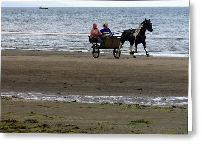 Sea Horse Greeting Cards - Horse Trap on the Beach Greeting Card by L M Reid