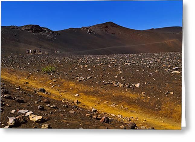 Horse Images Greeting Cards - Horse Trek, Haleakala, Maui, Big Greeting Card by Panoramic Images