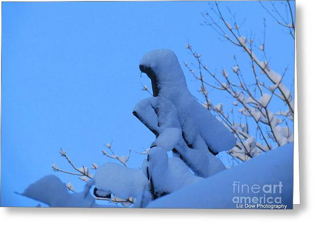 Maine Farms Greeting Cards - Horse Weather Vane Greeting Card by Elizabeth Dow