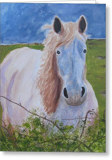 Lone Horse Greeting Cards - Horse with stormy skies Greeting Card by Dawn Dreibus