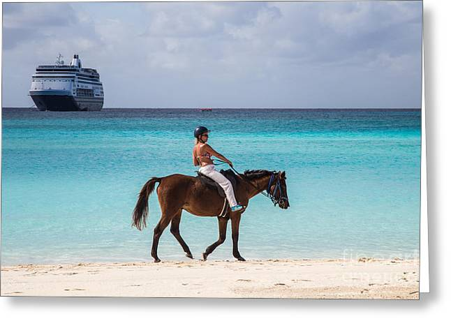 Toy Boat Greeting Cards - Horseback in the Bahamas Greeting Card by Rene Triay Photography
