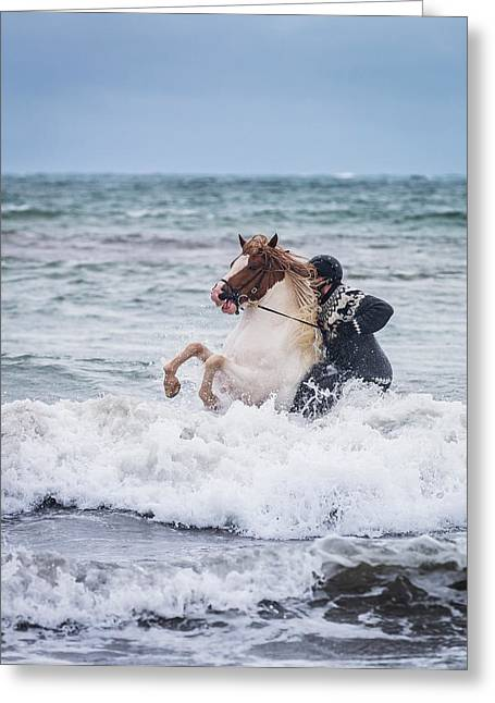 Safety Gear Greeting Cards - Horseback Riding In The Sea. Icelandic Greeting Card by Panoramic Images