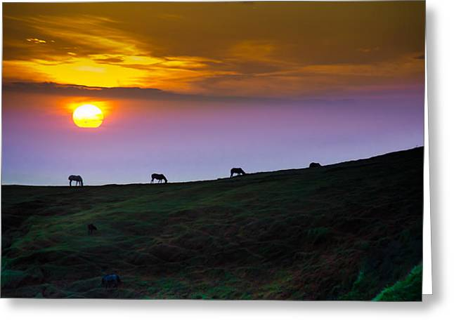 Horsed On The Purple Hillside Greeting Card by William Shevchuk