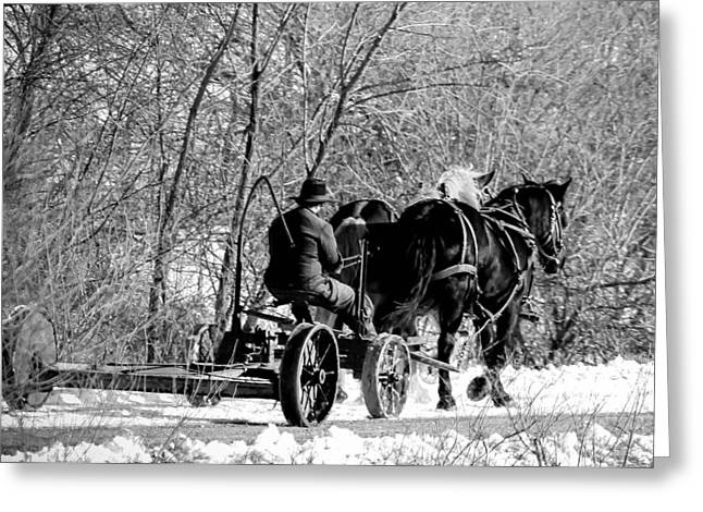 Amish Greeting Cards - Horsepower Greeting Card by Thomas Danilovich