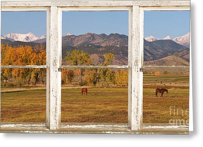 Rocky Mountains Greeting Cards Greeting Cards - Horses and Autumn Colorado Front Range Picture Window View Greeting Card by James BO  Insogna