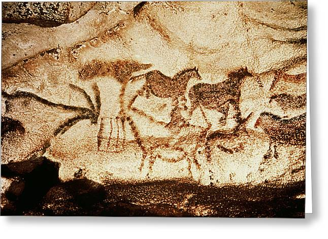 Horses And Deer From The Caves At Altamira, 15000 Bc Cave Painting Greeting Card by Prehistoric