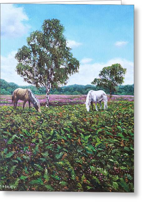 Heather Paintings Greeting Cards - Horses and Heather in the New Forest Greeting Card by Martin Davey