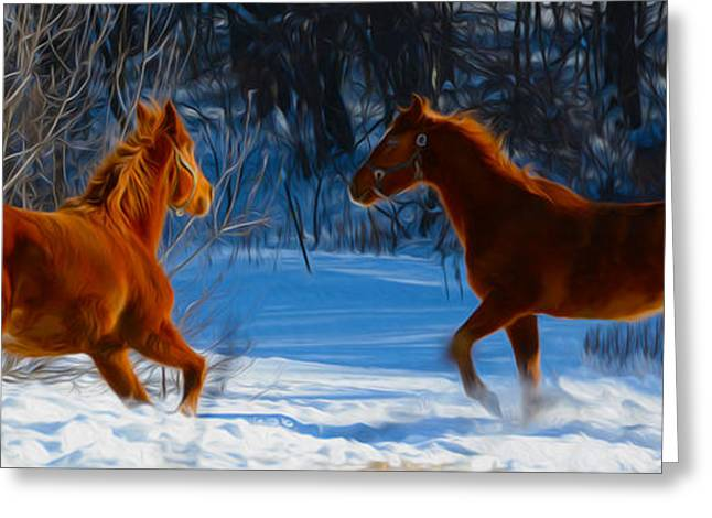 Ply Greeting Cards - Horses at play Greeting Card by Tracy Winter