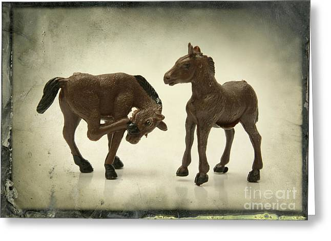Toy Animals Greeting Cards - Horses figurines Greeting Card by Bernard Jaubert