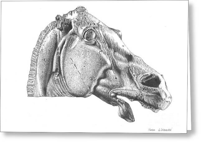 Marble Eye Greeting Cards - Horses Head Elgin Marbles Greeting Card by Yana Wolanski