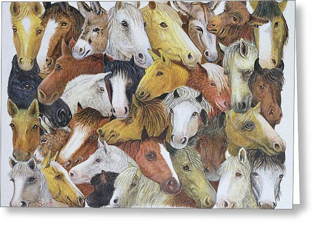 C20th Greeting Cards - Horses Horses Oil On Canvas Greeting Card by Pat Scott