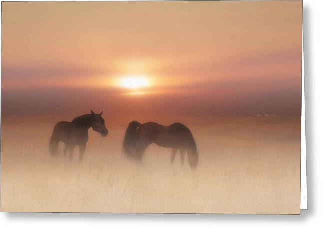 Valzart Greeting Cards - Horses in a misty dawn Greeting Card by Valerie Anne Kelly