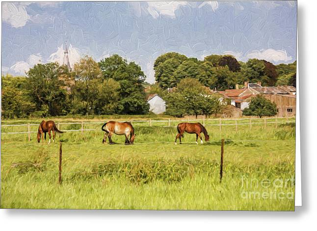 Horse In Field Greeting Cards - Horses in French countryside Greeting Card by Sheila Smart