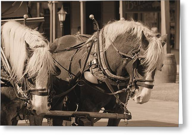 Horse Pulling Wagon Greeting Cards - Horses in tombstone #2 Greeting Card by G Berry