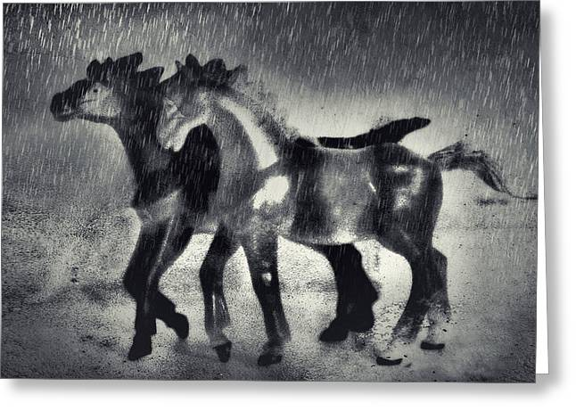 Horses In Twilight Greeting Card by Jeff  Gettis