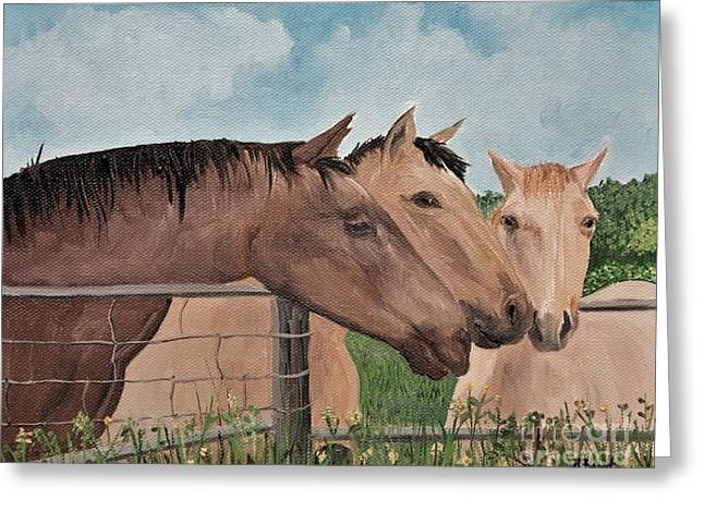Horse In Field Greeting Cards - Horses of British Columbia Greeting Card by Reb Frost