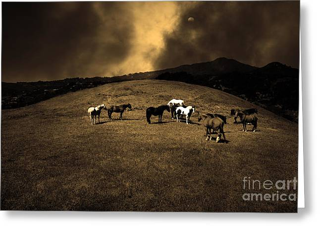 Horses of The Moon Mill Valley California 5D22673 sepia Greeting Card by Wingsdomain Art and Photography