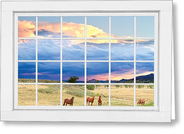 Equestrian Prints Greeting Cards - Horses On The Storm Large White Picture Window Frame View Greeting Card by James BO  Insogna