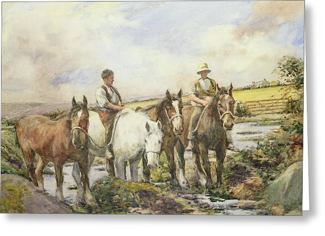 4 Stones Greeting Cards - Horses Watering Greeting Card by Henry Meynell Rheam