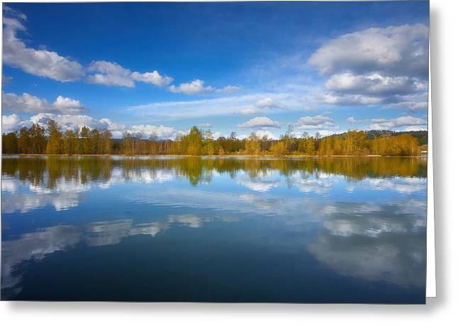 Lake Framed Prints Greeting Cards - Horseshoe Lake Reflections Greeting Card by Darren  White