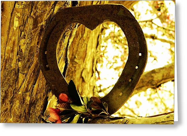 Steel Greeting Cards Greeting Cards - Horseshoe Love Greeting Card by Michelle Frizzell-Thompson