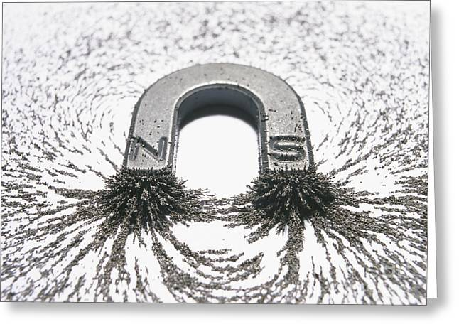 Attract Greeting Cards - Horseshoe Magnet And Magnetic Field Greeting Card by Cordelia Molloy