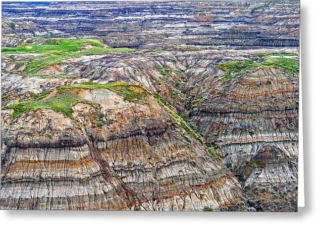 Dinosaur Provincial Park Greeting Cards - Horsethief Canyon Greeting Card by Tony Beck