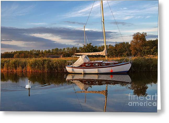 Peaceful Scene Greeting Cards - Horsey Mere in Evening Light Greeting Card by Louise Heusinkveld